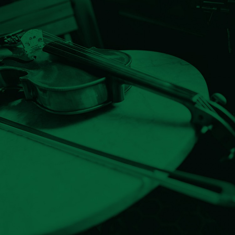 violin_lowres green